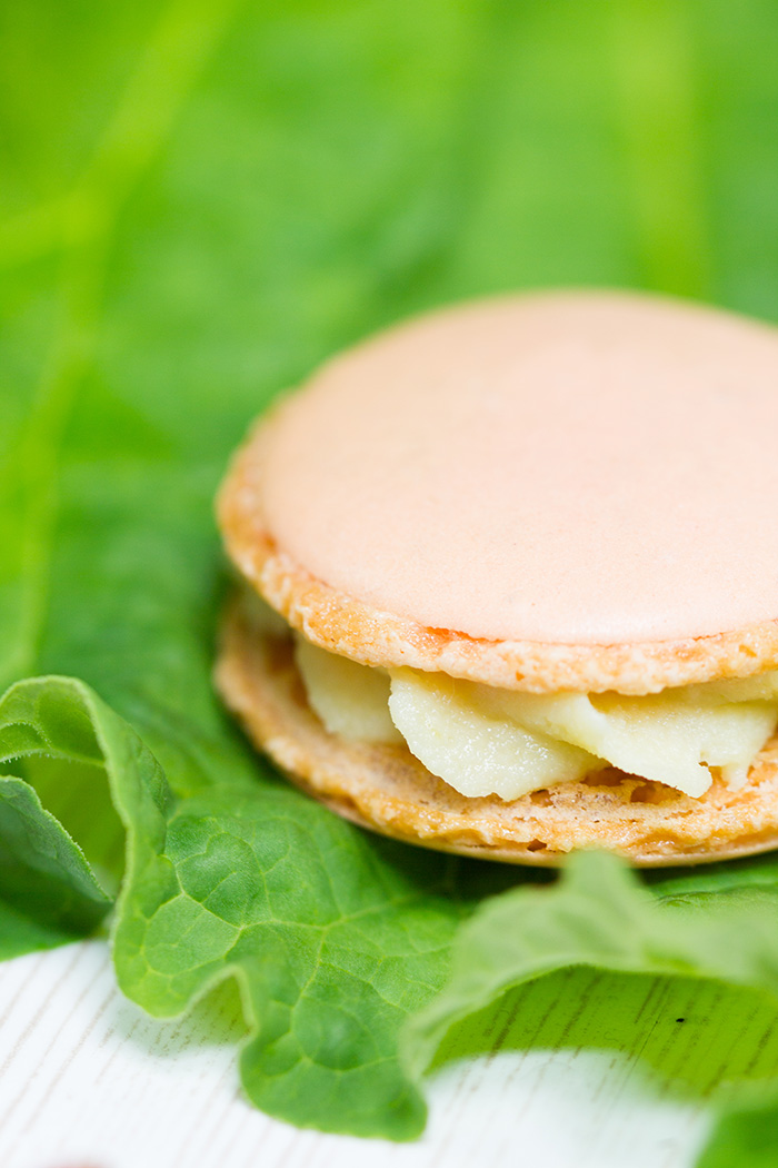 Rhabarber-Macarons